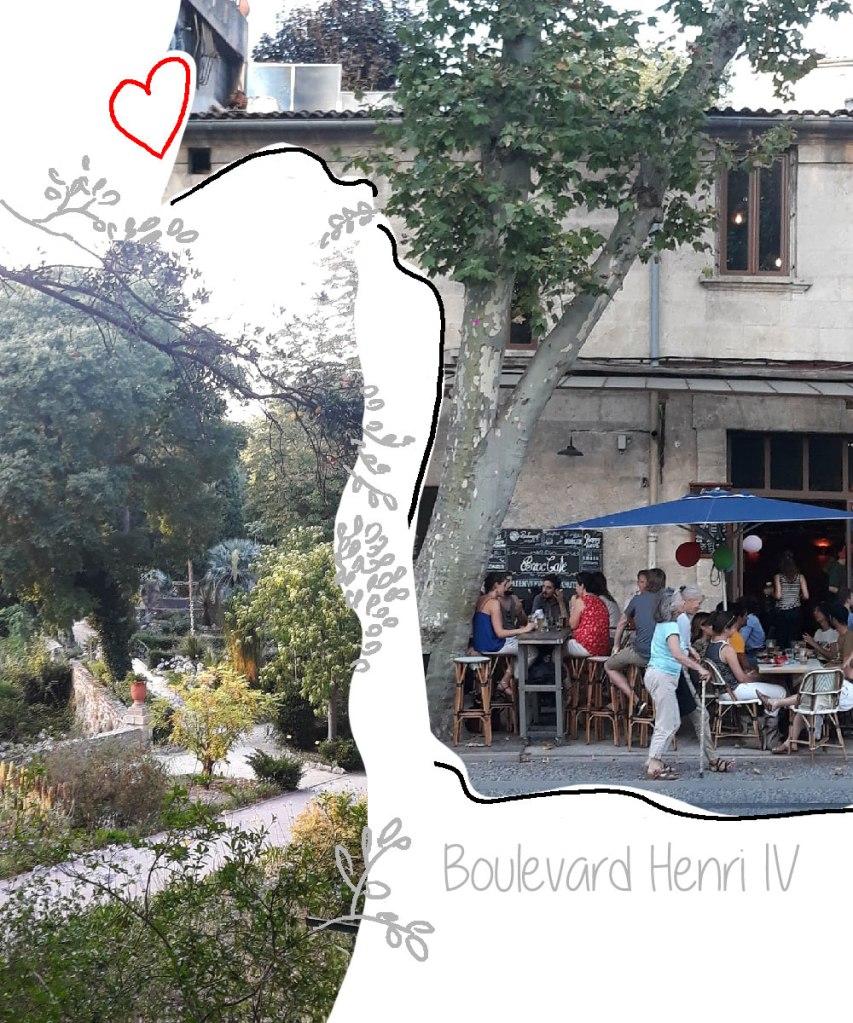 Boulevard Henri IV et Jardin des Plantes Montpellier