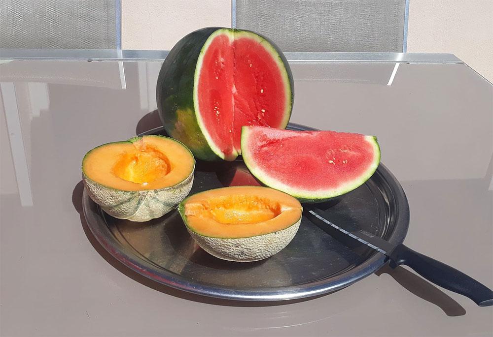 1-quart-de-pastèque-et-1-melon