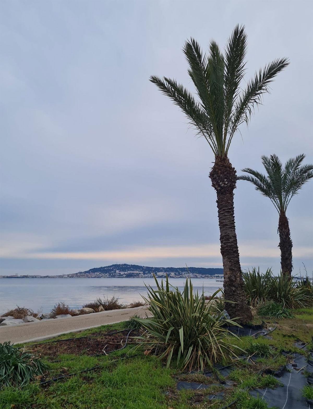 Balaruc-les-Bains,-vue-sur-Sète-par-temps-gris