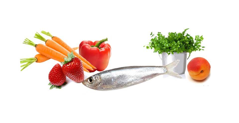 Illu les aliments pour bien bronzer